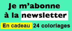 Newsletter Vincent Dufour